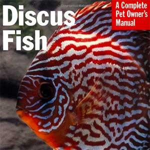 Discus Fish Manual
