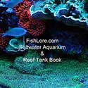 Fishlore's Saltwater Aquarium Reef Tank Book