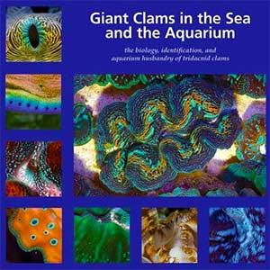 Tridacnid Clam Book