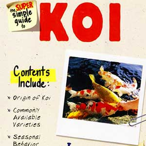 Koi - Super Simple Guide