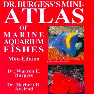 Mini Marine Fish Atlas