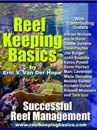 Reef Keeping Basics