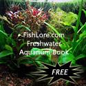 FishLore's Freshwater Aquarium Book