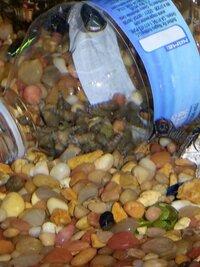 snail trap.jpg