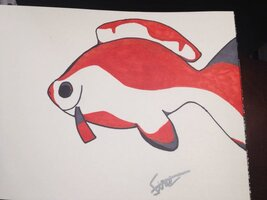 ImageUploadedByFish Lore Aquarium Fish Forum1451853927.659486.jpg