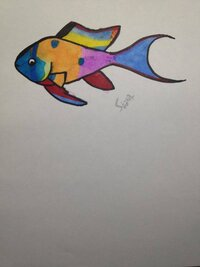 ImageUploadedByFish Lore Aquarium Fish Forum1451874694.514140.jpg