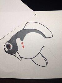 ImageUploadedByFish Lore Aquarium Fish Forum1451876203.443812.jpg