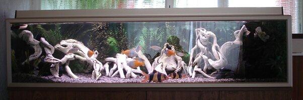 Aquarium 6' Steve Joul 25.08.07 001 - Copy.jpg