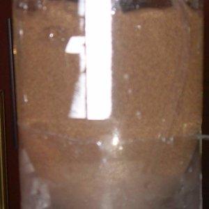 Jan 2009 010