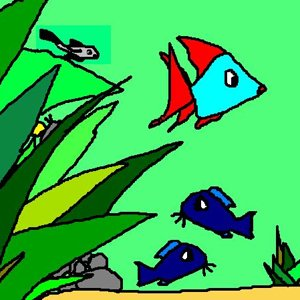 Woodskipper Catfish, Blue corydoras, Yellow Neon Snail, Twin tail Tetra.
