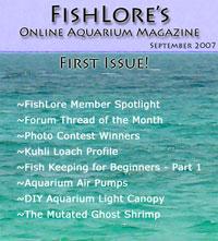 2007 Fish Lore Online Aquarium Magazine